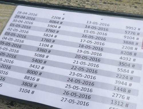 Bezahlungskontrolle mit Tagescodes im Baumarkt